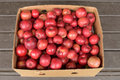 Box of organic beacon malus domestica beacon apples red in Stock Images