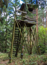 Box stand at a glade in tiefental in the lüneburg heath Stock Photography