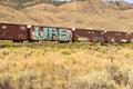 Boxcars and graffiti Royalty Free Stock Photo
