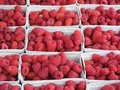Boxed raspberries Stock Photo
