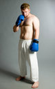 Boxer on dark background Royalty Free Stock Photo