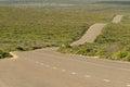 Boxer Drive, windy wavy roadway on Kangaroo Island, South Australia. Royalty Free Stock Photo
