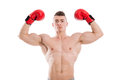 Boxer flexing biceps Royalty Free Stock Photo