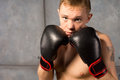 Boxer with his gloved fists raised defensively young to protect head looking over the top at the camera a determined Royalty Free Stock Image