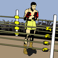Boxer in a ring comic book style illustrated Royalty Free Stock Photography