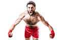 Boxer s rage a very muscular young with red trunks and hand wraps isolated over white background Stock Photography