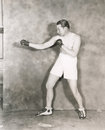 Boxers stance Royalty Free Stock Photo