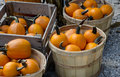 Boxes and baskets of pumpkins wood are laid out for sale at a farmers market Royalty Free Stock Photography