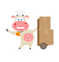 Boxes cow illustration of chef on white background Stock Image