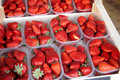 Boxes of fresh strawberries Royalty Free Stock Images