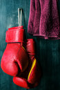 Boxing gloves hanging on grunge background Royalty Free Stock Images