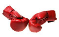 Boxing gloves pair of red leather isolated on white Royalty Free Stock Image