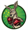 Boxing kangaroo national mascot australia Royalty Free Stock Photography