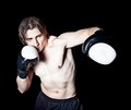 Boxing workout Royalty Free Stock Image
