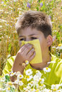 Boy with allergic rhinitis in meadow the Stock Photo