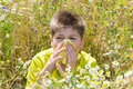 Boy with allergic rhinitis in meadow the Royalty Free Stock Photo