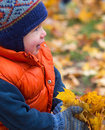 Boy in autumn playing leaves Stock Images