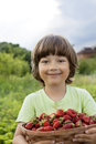 boy with basket of berries Royalty Free Stock Photo