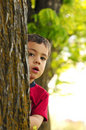 Boy behind tree Stock Images