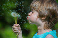 Boy blowing dandelion Royalty Free Stock Photo
