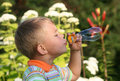 Boy blowing soap bubbles Royalty Free Stock Image