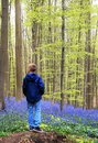 Boy in the blue forest Royalty Free Stock Photo