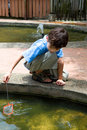 Boy catching little fish with a net Royalty Free Stock Images