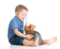 Boy child examining dog on white background Royalty Free Stock Photography