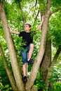 Boy Climbing Tree looking to Left Royalty Free Stock Photo
