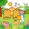 Boy collects honey. Royalty Free Stock Photo