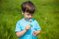 Boy with dandelion little on meadow Royalty Free Stock Photos
