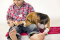 Boy with a dog beagle Royalty Free Stock Photo