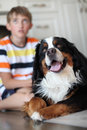 Boy and dog. Focus on the dog Royalty Free Stock Photography