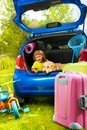 Boy and dog in the trunk waiting little three years old sitting car with a for parents to put bags tricycle for trip Stock Images