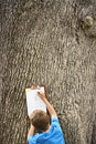 Boy drawing by tree trunk rear view of young Royalty Free Stock Photo
