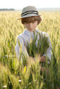 Boy is among the ears of wheat Royalty Free Stock Photos