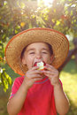 Boy eating apple in orchard straw hat Royalty Free Stock Photos