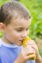 Boy eating corn Royalty Free Stock Photos