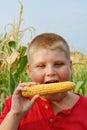 Boy eating fresh sweetcorn Royalty Free Stock Photo