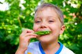 Boy eating a green Peas Royalty Free Stock Photo