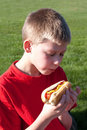 Young Boy enjoying a Hot Dog Royalty Free Stock Photo