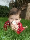 Boy with eggs 5 Royalty Free Stock Photos