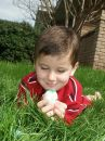 Boy with eggs 6 Royalty Free Stock Images