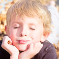 Boy enjoying autumn fun young lying in leaves Stock Photography