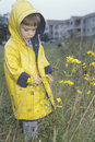 A boy  exploring the wildflowers on a rainy day, Washington, D.C. Royalty Free Stock Photo