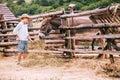 Boy Feeds A Donkey On Farm