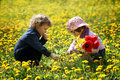Boy and girl in summer flowers field Royalty Free Stock Images