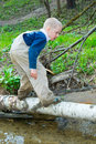 Boy goes on a log across the river Royalty Free Stock Image