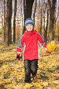 Boy goes for a walk in park in autumn Royalty Free Stock Photo