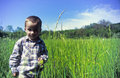 Boy in grass field Royalty Free Stock Images